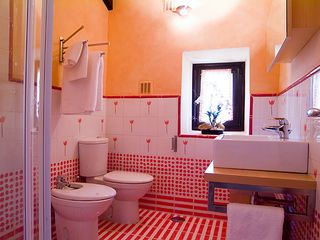 Cortes de la Frontera villa photo - Bathroom 2 with shower room, bidet, wc and wash basin. Bathroom 3 is similar
