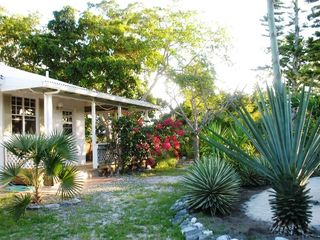 Providenciales - Provo cottage photo - Artemis Garden with Sandy Oval under Christmas Palms