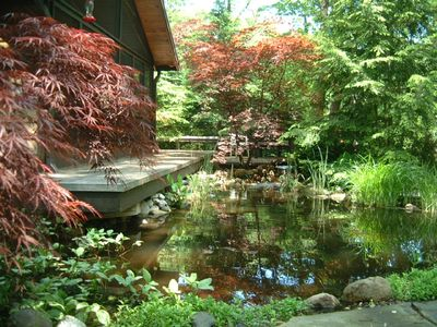 ZENADU: CHICAGO CHIC MEETS WOODLAND RUSTIC IN THIS TRANQUIL RETREAT - Deck overhangs koi pond with water lilies