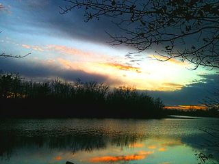 Shakopee cottage photo - Fall sunset over the mainland lot