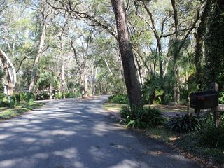 Amelia Island house photo - View from driveway, going east