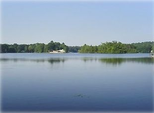 Cottage directly on the lakefront with this magnificent view!