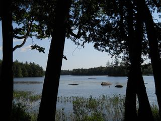 Green Lake cabin photo - WE ARE FULLY BOOKED FOR SUMMER 2012. PLEASE CONSIDER US FOR YOUR 2013 VACATION.