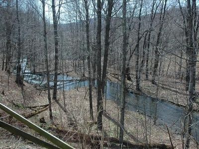 View of creek in our backyard from back deck.
