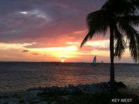 WOW Oceanside Voted #1 Key West's Best Luxury Penthouse Marina/Condo/Pool