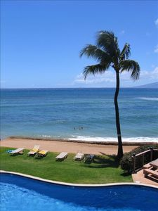 Straight out from the lanai is the pool, the lawn for suntanning and the ocean.