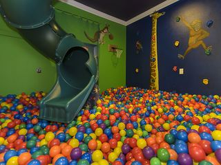 Clermont estate photo - ball pit and rock climbing room with 2 story slide