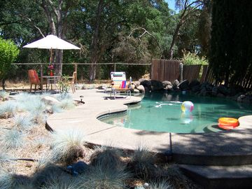 Folsom house rental - Enjoy the backyard with sparkling pool!