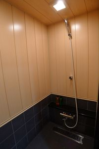 Beautiful shower room with high flow shower head and thermo tiles for winters.