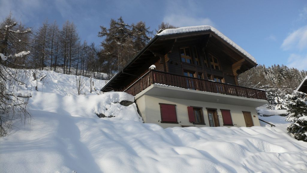 Holiday house, 150 square meters , Vex, Switzerland