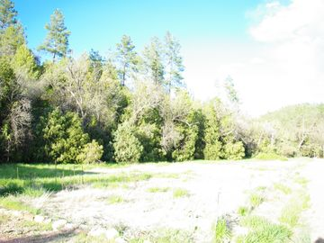 View of field next to property on Right. Elk often feed here.