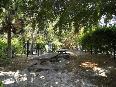 Enjoy a picnic lunch or grill some fresh caught fish under the banyan trees.