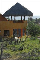 Todos Santos house photo - After the Rainy Season, the Green Hurts the Eyes