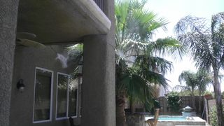 Henderson house photo - Well placed palms + misters at the balcony, patio, & pool help to keep you cool.
