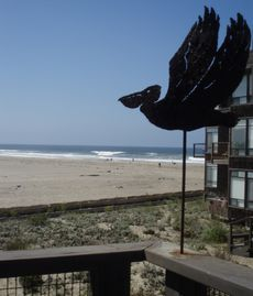 Pajaro Dunes condo rental - Steps from the beach with full beach view