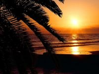RELAX - DEC SALE $ 99 NIGHT LOW weekly rates Villa Madeira Gulf front beach unit