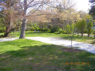 View into side yard - East Orleans house vacation rental photo