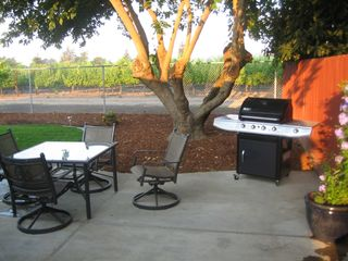 Napa house photo - Seating area with gas grill overlooking vineyard