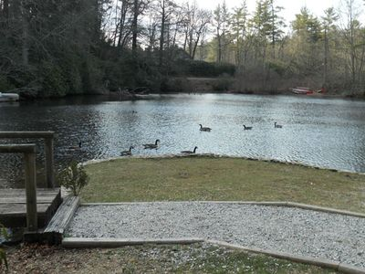 Bring a Loaf of Bread and Feed The Ducks on Mirror Lake.