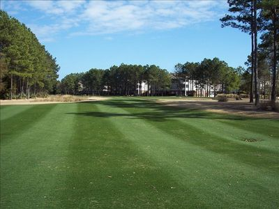 Norman Course view near Arbor Trace