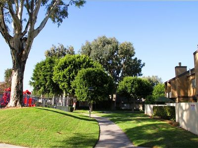 walkways and greenery within the community
