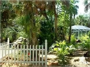 Captiva Cutie - lush private landscaping