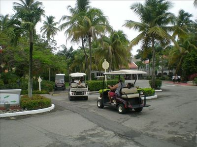 Fun in Golf Carts! Plenty of paths available. The issue is who gets to drive!