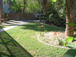 Sunny rear yard and dock as seen from the lanai - Siesta Key house vacation rental photo