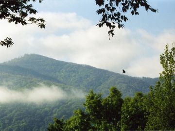 View the morning mist on Eagle Nest Mountain.