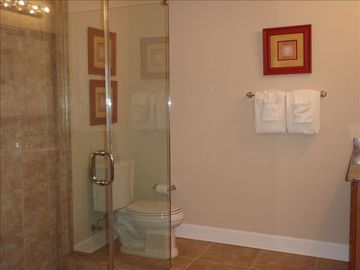 Master bathroom with walk-in shower
