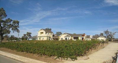 Guest house and vineyard