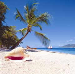 Palm Island house photo - Beautiful Beaches