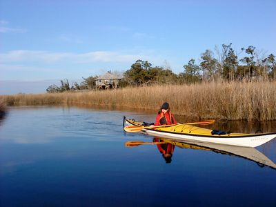 Live on Arcadia Bayou and the Wolf River with ever changing views of the marsh