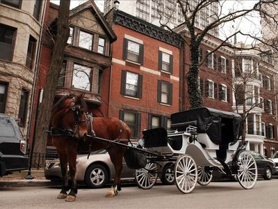 Horse drawn carriage rides pass by the front windows