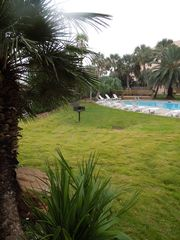 Galveston condo photo - Our East Pool has shade at the end of the day