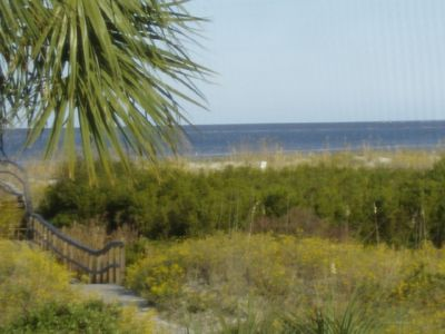 View from the porch-boardwalk, dunes beach, ocean