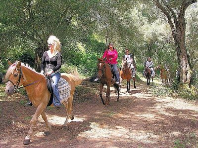 Avlaki Horse Riding School