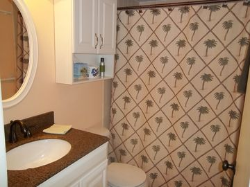 Master bathroom with tile shower.