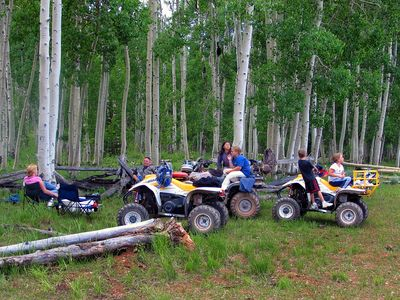 Miles and miles of trails to ATV and countless spots to have a picnic.