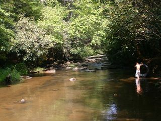 Ellijay cabin photo - Your Kids Will Love Swimming, Splashing, Floating, Fishing, and Skimming Stones!