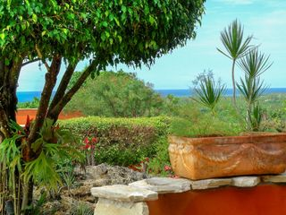 Las Terrenas villa photo - Ocean view from all homes.