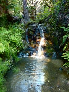 Big Sur cottage rental - Walk to your private & serene 12ft waterfall w/pool for a refreshing experience!