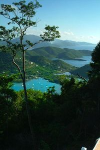 Overlooking Coral Bay and the British Virgin Islands