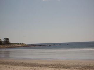 Rye house photo - Jenness Beach Facing North
