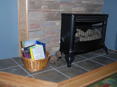 Valle Crucis cottage rental - Living room, hearth stove with gas logs.