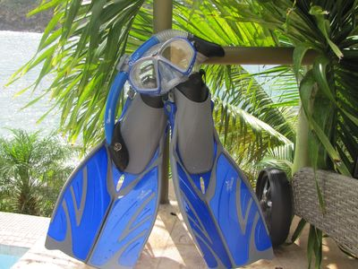 Free clean snorkel gear for you! Enjoy our fabulous marine aquarium by Nature.