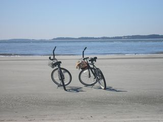 Palmetto Dunes villa photo - Our bikes (and yours!)enjoying a ride on the beach