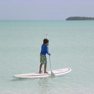 Paddleboards are available to rent for your stay