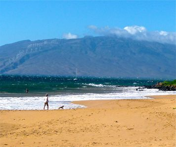 Swim, snorkel, boogie board & relax on our Kamaole beaches