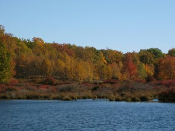 Local lake with Fall colors, walking distance or short drive from cottage